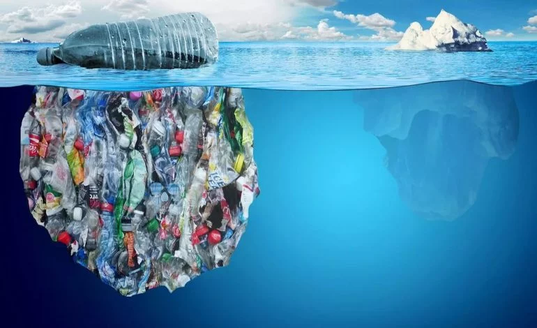 Stop Polluting the Oceans: Simple Switches to Live a Plastic Free Life